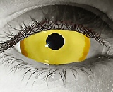cyvus vail contact lenses