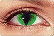 greenreptilecontacts