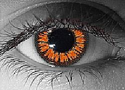 twilight contact lenses
